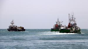 Tres de la embarcacions de pesca d'arrossegament de la flota tonyinaire, capitanejada pel Grup Balfegó, sortint de l'Ametlla de Mar