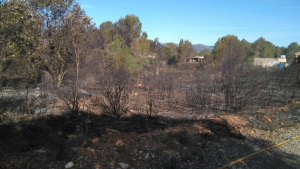 Zona on hi ha hagut l'incendi al Pla de Santa Maria.