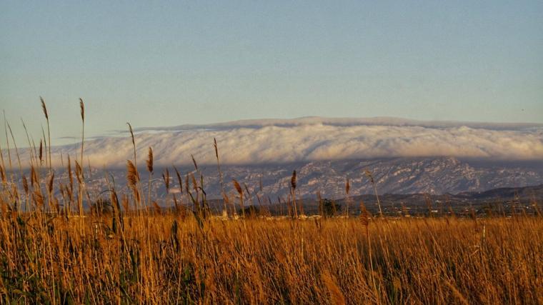 El vent bufarà fort al Pirineu, a l'Empordà i a les terres de l'Ebre aquest diumenge