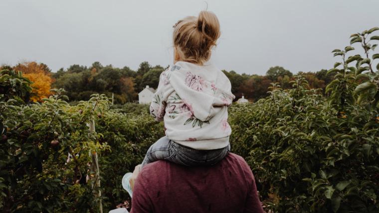 Les 100 Frases Més Boniques Per Als Fills