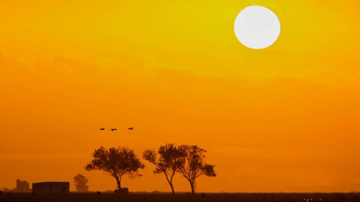 Sortida de sol espectacular dissabte al Delta de l'Ebre