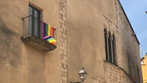 Aquest divendres es commemora el dia per l'alliberament LGTBI.