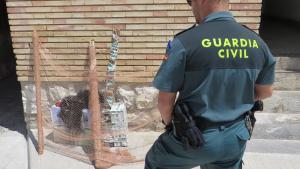 Denunciats dos veïns de Tarragona que capturaven caderneres il·legalment al Montsià