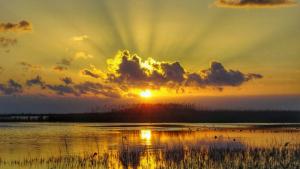 El sol dominarà arreu aquest dimecres