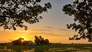 Sortida de sol dimarts al Delta de l'Ebre