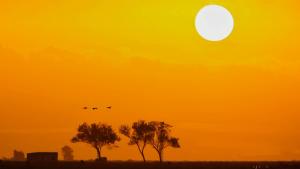 El sol i la calor de ple estiu seran els clars protagonistes