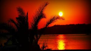 El sol i la calor d'estiu seguiran dominant aquest dimarts