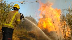 Els Bombers de la Generalitat han activat 11 dotacions per un incendi forestal a Montferri