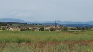 Fins al lloc de l'accident s'han desplaçat efectius dels Mossos, dels Bombers i del SEM