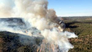 Imatge de l'incendi de vegetació forestal de Maials, al Segrià