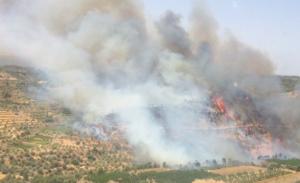 Incendi forestal entre la Torre de l'Espanyol i Vinebre