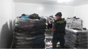 La Guàrdia Civil detecta 11.300 kg de musclos grecs sense l'etiquetatge legal