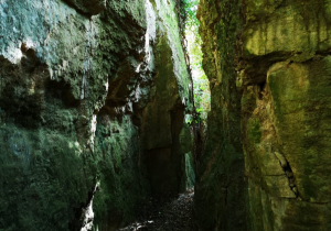 La roca calcàrea on està assentada la terra de Les Flandes de Llopart