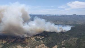 L'incendi forestal del Perelló afecta unes 60 hectàrees de vegetació