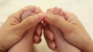 Nombre de los dedos de la mano y de los pies