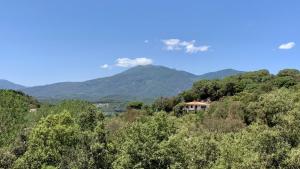 Vista al Montseny des del Parc Natural del Montnegre aquest juny