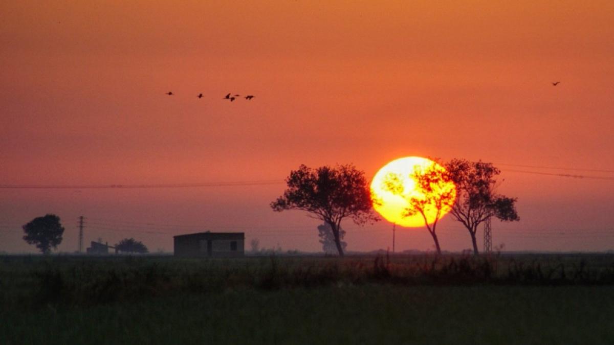 Sortida de sol espectacular aquest dijous al Delta de l'Ebre