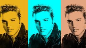 50 aniversario del famoso LP 'From Elvis in Memphis'.