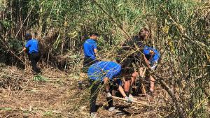 Camp de treball per a joves a l'Espluga de Francolí