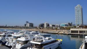 El pla de l'Ajuntament de Barcelona per al Port Olímpic «és una ruïna»