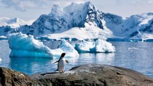Los expertos comprobaron que los termómetros caían regularmente por debajo de los -90 ºC casi cada invierno e