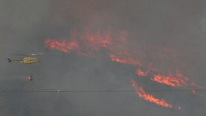 Els efectius tracten de controlar el foc virulent que s'escampa en la zona de la Solana de Beneixama