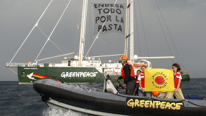 «Endesa. Tot per la pasta». Greenpeace denuncia el risc de l'energia nuclear a Vandellòs