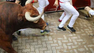 Imagen de los toros Miura.