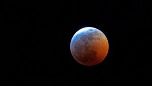 Imatge de l'eclipsi de Lluna d'aquest 21 de gener