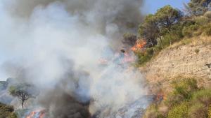 Imatge de l'incendi a Capellades