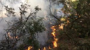 Imatge de l'incendi, al barri de Sant Salvador de Tarragona