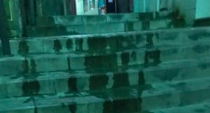 Les escales plenes de pixats