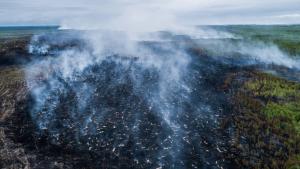 Los fuegos del norte de Rusia tiene una extensión y una intensidad sin precedentes, y son un riesgo para la salud ambiental