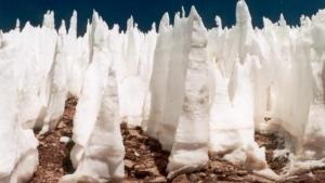 Los puñales gélidos se caracterizan por medir desde unos cuantos centímetros hasta 5 metros de altitud