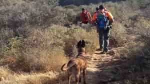 Perros de Protección Civil de Marbella participan en la búsqueda