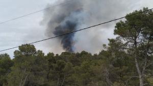 Quinze dotacions treballen per apagar les flames en l'incendi forestal de Querol.