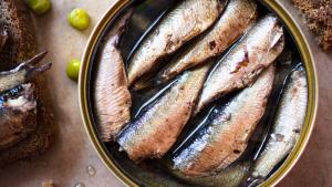 Sardines en conserva en una foto d'arxiu