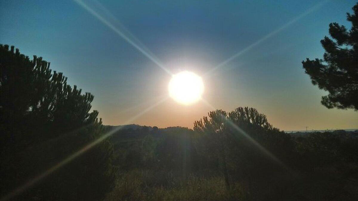 El sol i l'intensa calor dominarán gairebé tota la setmana