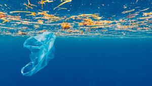 Amb petits gestos, com el reciclatge de l'oli, podem canviar el medi ambient
