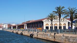 Aquest serà el cap de setmana d'activitats al Moll de Costa del Port de Tarragona.