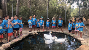 Cent quinze infants han participat en el Casal d'Estiu del Morell a falta d'encara una quinzena perquè acabi.