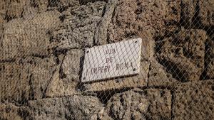 Conservar la Muralla de Tarragona costa aproximadament un milió d'euros per cada cent metres, és a dir, 13 MEUR.