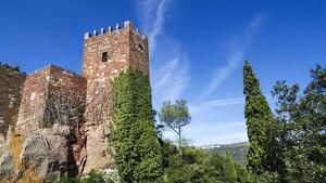 El Castell Monestir d'Escornalbou està vivint un estiu replet d'activitats.