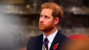 El príncipe Harry está desolado en estos momentos