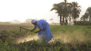 Els països pobres pateixen especialment les conseqüències del canvi climàtic