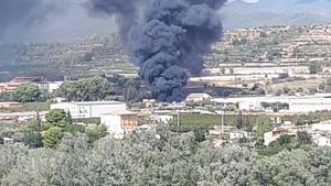 Imatge de l'incendi a Móra la Nova.