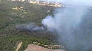 Imatge de l'incendi de Conesa.
