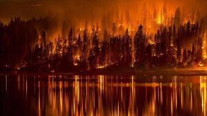 Imatge dels incendis de Sibèria
