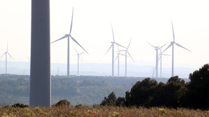 Les dues entitats terraltenques reclamen que s'aturi la instal·lació de nous parcs eòlics a la comarca.