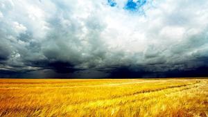 Les tempestes de tarda seran freqüents a molts punts aquest cap de setmana